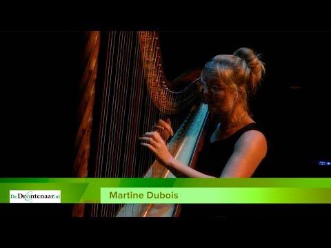 Martine Dubois speelt harp tijdens 'taizé-viering' in Swifterbant
