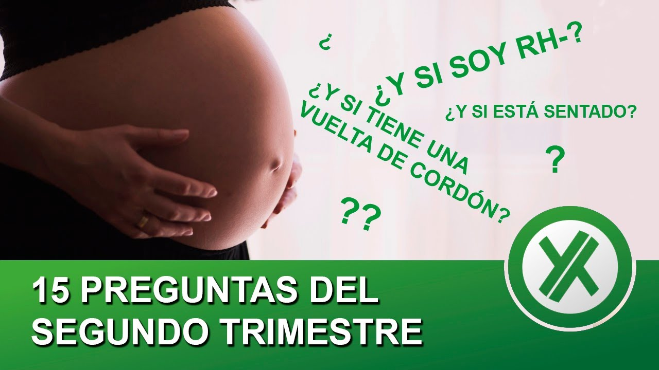 15 preguntas frecuentes del segundo trimestre de embarazo