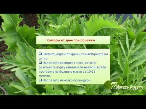 Видео: Хрян – лечебно действие и рецепти