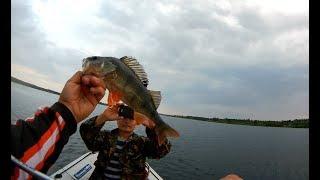 в ШОКЕ от такой проводки..окунь сходит с ума!!!Как стал рыбаком!