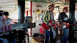 Swingin' (Tom Petty cover)