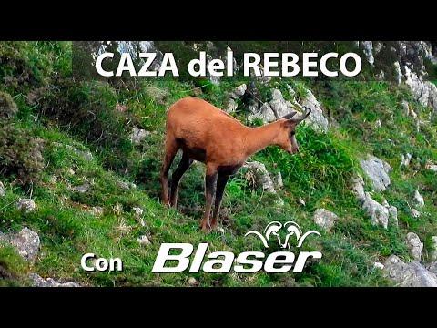 Caza del rebeco en Picos de Europa con Blaser