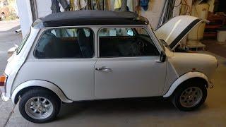 Best Mini Ever!