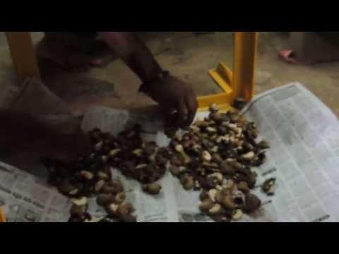Automatic Cashew Nut Kernel Cutter
