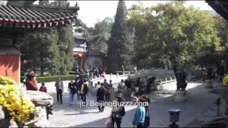 Video : China : XiangShan (Fragrant Hills) Park 香山公园, BeiJing - video