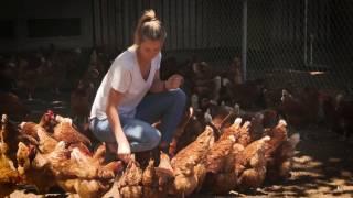 Rachel Wilson: an Australian free-range egg farmer