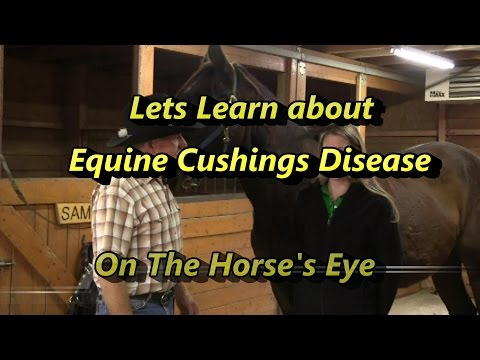 Video Learn to recognize Cushings Disease, The Horses Eye Presents Recognizing Equine Cushings symptoms