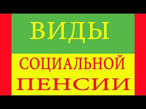 Виды социальных пенсий в Российской Федерации