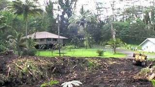preview picture of video 'Cutting down Albezia tree in Nanawale, Pahoa, Hawaii.'