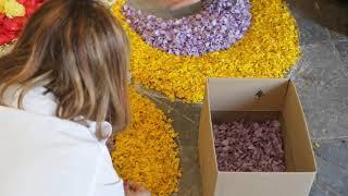 Ver vídeo Município do Sardoal