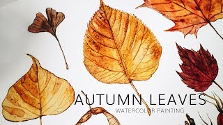Autumn Leaves Painting · Fall Season Nature Watercolor Illustration Time Lapse