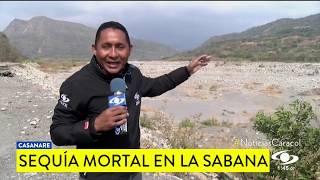 SEQUÍA MORTAL EN CASANARE