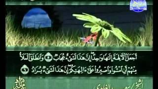 المصحف المرتل 23 للشيخ سعد الغامدي  حفظه الله