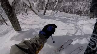 2018/1/28 白馬コルチナスキー場 ツリーラン HAKUBA VALLEY POWDER TREERUN