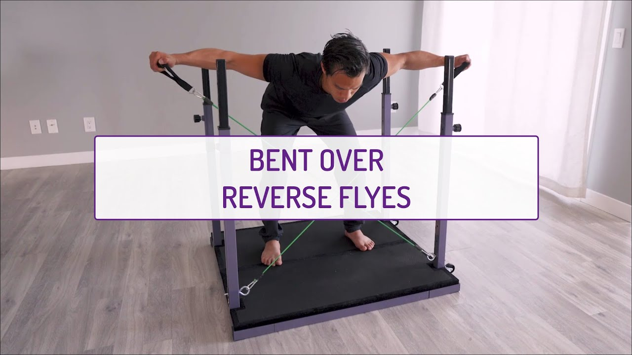 Bent Over Reverse Flyes