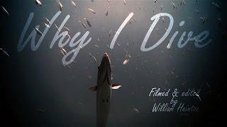 Why I Dive