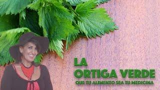 La Ortiga Verde