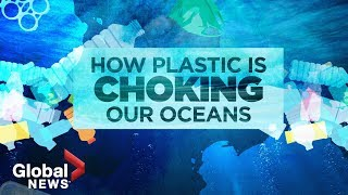 Plastic pollution crisis: How waste ends up in our oceans