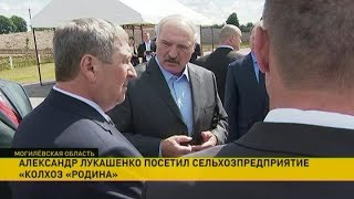 Александр Лукашенко посетил Белыничский район