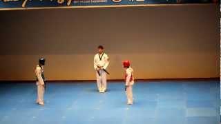 Thi đấu taekwondo kiểu mới
