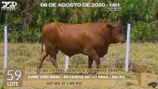 Coro 2384 b4 fiv