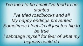 Alanis Morissette - Fear Of Bliss Lyrics