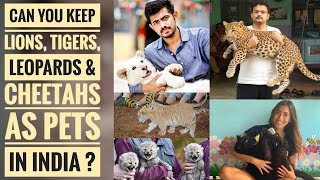 Can You Keep Lions, Tigers, Leopards & Cheetahs As Pets In India ?