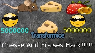 TRANSFORMICE CHEESE AND FRAISES HACK!