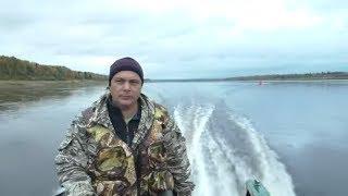 Отличный улов за 4 часа / Ловля хариуса на мушки / Рыбалка в сентябре
