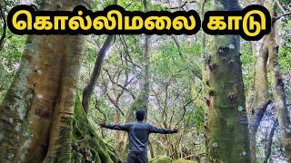 கொல்லிமலை பயணம் | Kolli Hills | Tamilnavigation