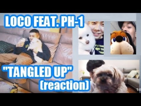 "LOCO FEATURING PH-1 (reaction) ""TANGLED UP"" (THOSE DOGS ARE SO CUTE!!)"