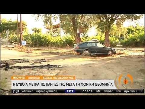 Εύβοια   Μετρά τις πληγές της μετά τις πλημμύρες   11/08/2020   ΕΡΤ