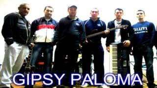 Gipsy paloma - 1