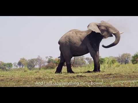 Natural Gas Drilling Begins Upriver from Biodiverse Okavango Delta