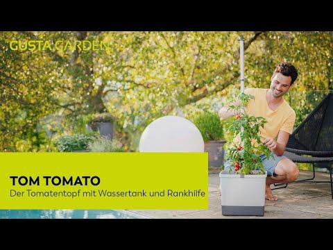 Mit TOM TOMATO Tomaten auf Balkon, Terrasse oder im Garten anbauen [Urban Gardening]