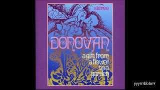 Donovan - Oh Gosh