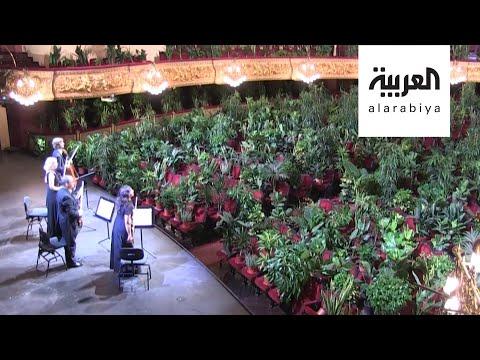 العرب اليوم - شاهد: حفل أوبرا جمهوره نباتات!