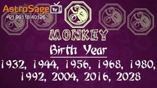 Chinese Horoscope 2017 in 2 Minutes - Chinese Zodiac Monkey