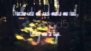 Wake Me Up Inside - Evanescence (Video)