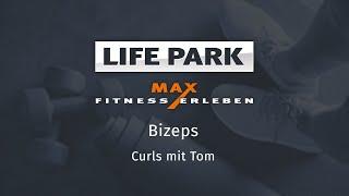 Training mit Tom 05 – Bizeps – Curls