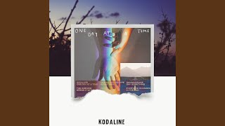 Kodaline In the End