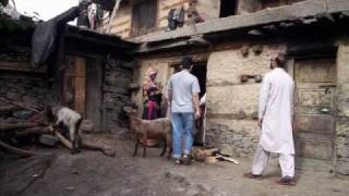 preview picture of video 'Visit to Kalash'