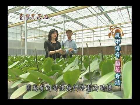臺灣農民力第28集