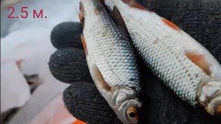 Форумы о рыбалке на плещеевом озере 2020