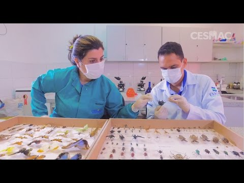 Eu Escolho Cesmac - Ciências Biológicas