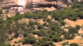 Police In Helicopter' - John Holt (Tom Laroc Video