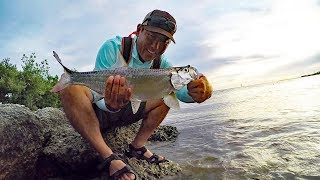 Key West:  Tarpon Off The Beach...On The Fly