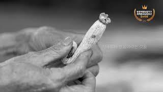 하늘선물 금산인삼 금홍 이미지