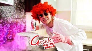 Gesek - Pij pij mała (Official Video)