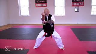 Kata 11.3 – Brown Belt – Tekki Sandan – Practice